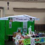 Ужгородців закликають долучитися до порятунку життя Таміли Лошак