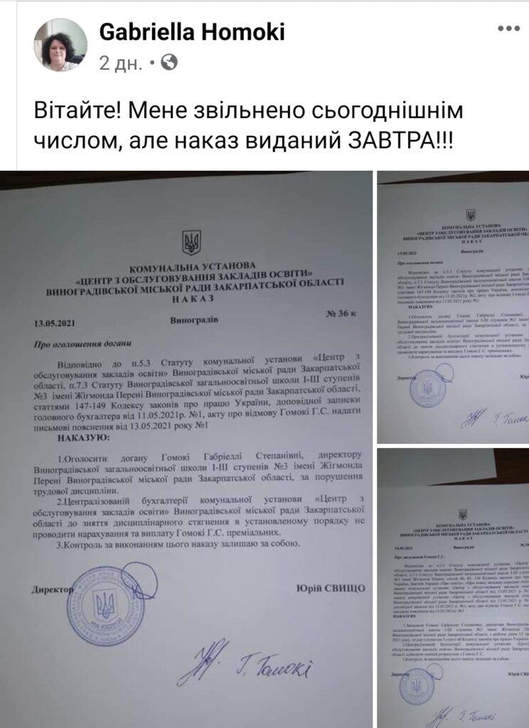 Скандал навколо угорськомовної школи на Закарпатті набирає обертів